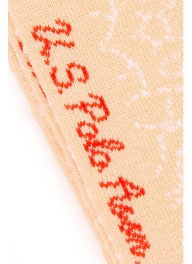 U.S. Polo Assn. 3'lü Çorap Pembe